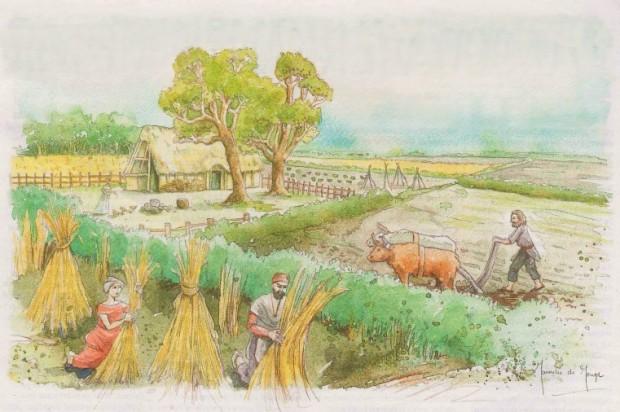 Reconstructietekening Celtic field (Janneke de Jong)